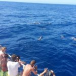 Sea Sport Gran Canaria